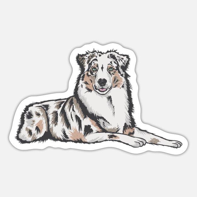 Australian Shepherd Hund Sticker