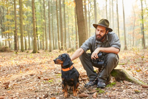 brandlbracke im Wald mit Jäger